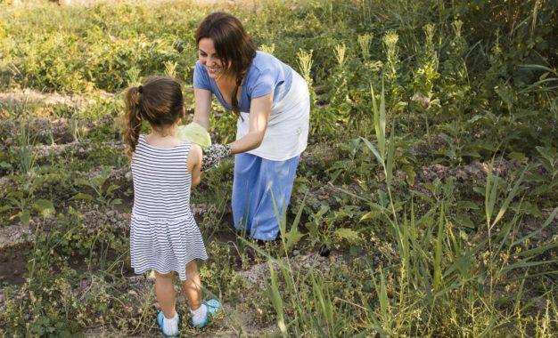 Huertos escolares y su vinculación con la educación alimentaria nutricional